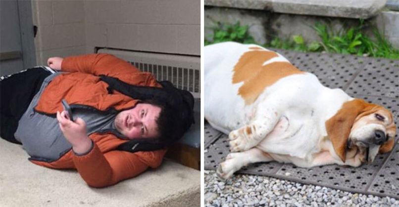 sự trùng hợp giữa người và chó