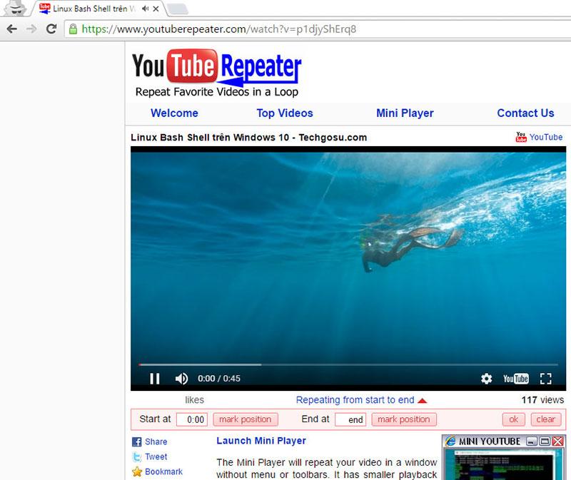 tự động phát lại video youtube