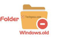 folder windows.old delete